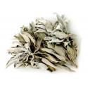 White Sage 25g