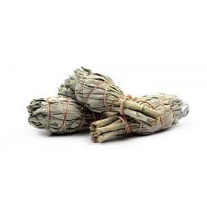 White Sage Smudge small wrapped 20g