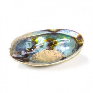 Tęczowa muszla do kadzideł z podstawką - Haliotis Iris